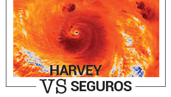 Harvey VS Seguros