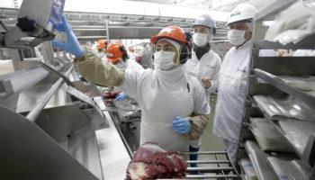 Chile apuesta por la diversificación como eje de exportaciones en 2020
